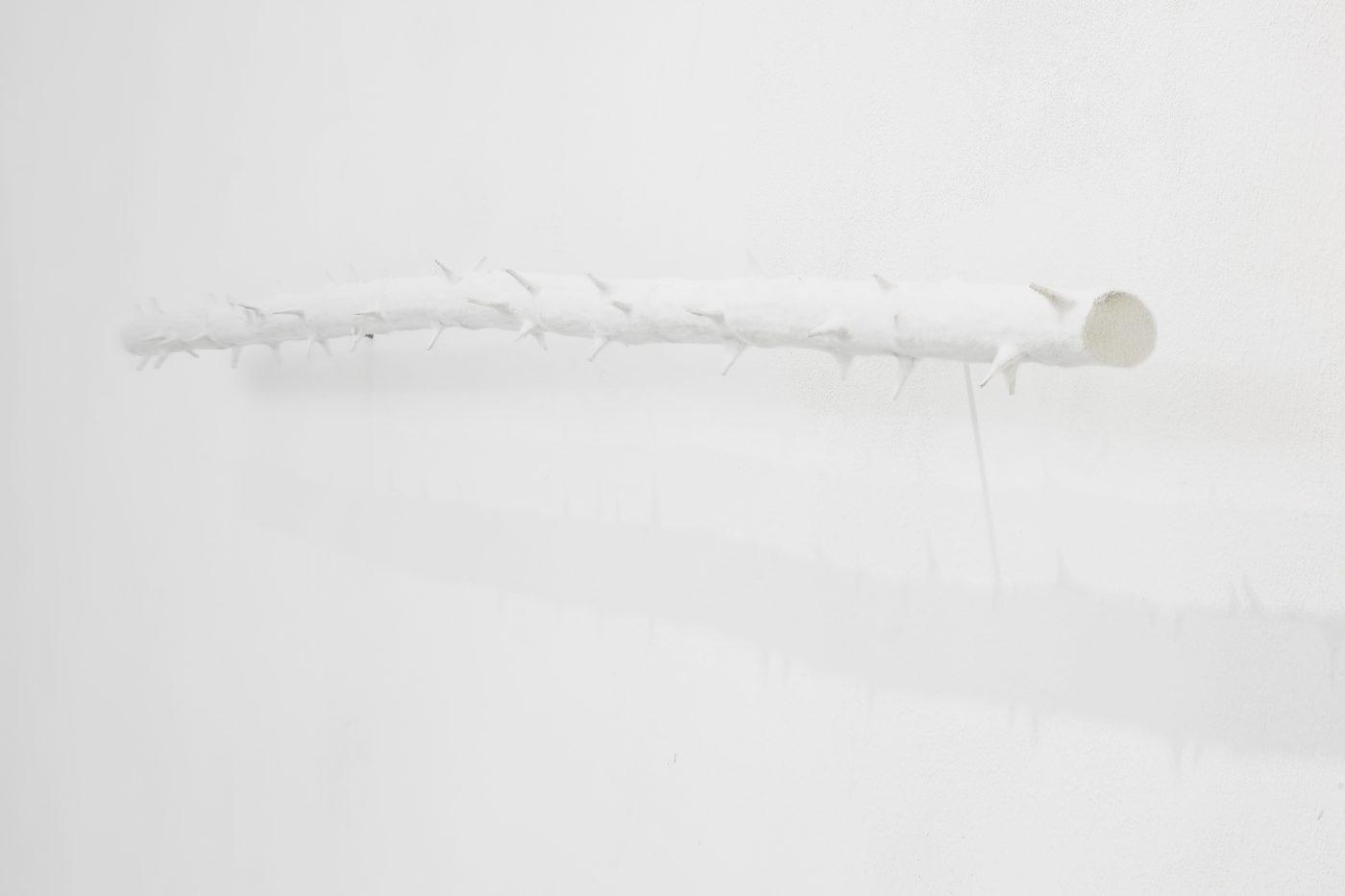 Galerie Lange + Pult – Didier Marcel